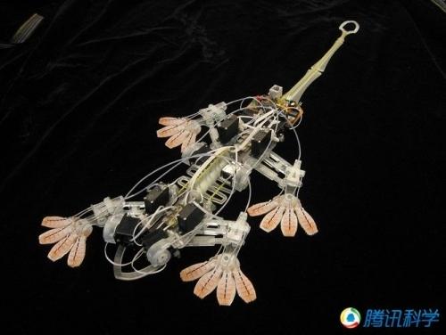 神奇的模仿动物机器人:壁虎