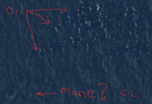 love:我找到失联的马航客机了?