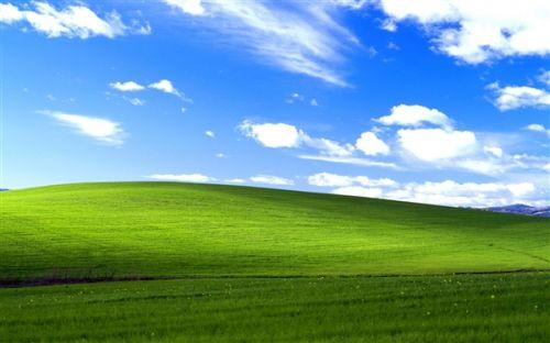 打印 Windows XP桌面经典壁纸创作人 肠子悔青了 元器件交易网