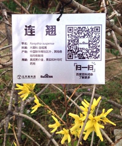 """百度百科在北京植物园落地""""二维码"""" 营造""""五一""""游园新体验0"""