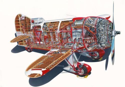 美国最快小型飞机:萌萌哒