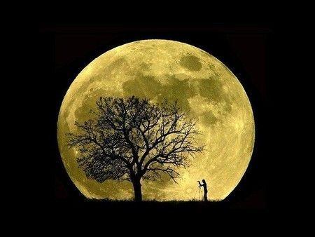是因为月亮围绕地球公转的轨道是一个椭圆形