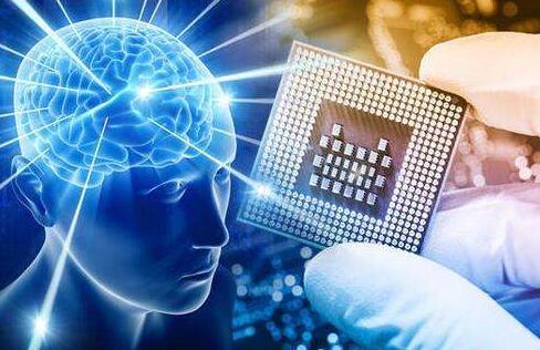 小白鼠?芯片大脑可用来模拟药物对大脑影响0