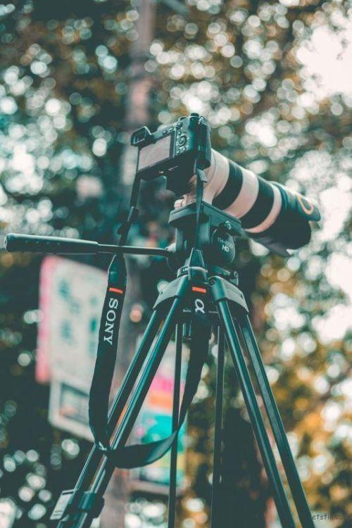 如何选择相机 专业人士给你的解答2