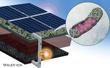 研究人员打造新生物太阳能电池技术 阴雨天也可用0