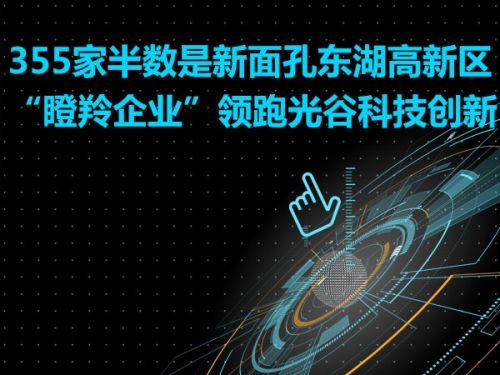 """355家半数是新面孔东湖高新区""""瞪羚企业""""领跑光谷科技创新0"""