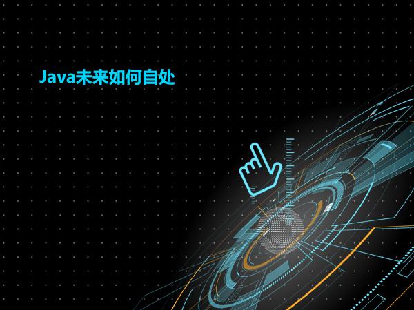 Java未来如何自处