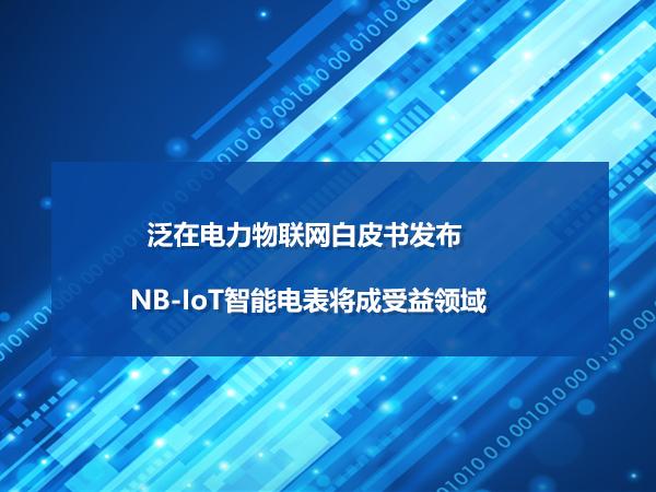 泛在电力物联网白皮书发布 NB-IoT智能电表将成受益领域