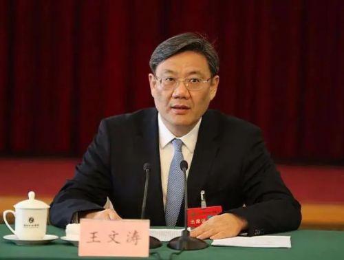 王文涛的「招商引资29条」0